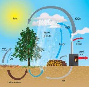 calderas pellets tecnología medio ambiente