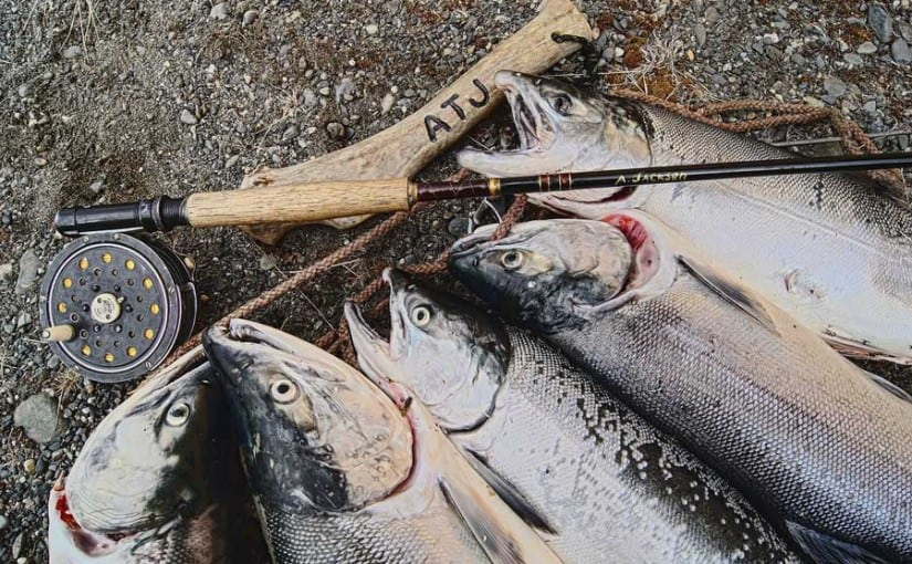 Las mejores marcas de carretes de pesca del mercado